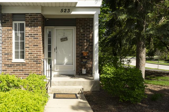 523 W Parkside Drive #523, Palatine, IL 60067 (MLS #10391370) :: Berkshire Hathaway HomeServices Snyder Real Estate