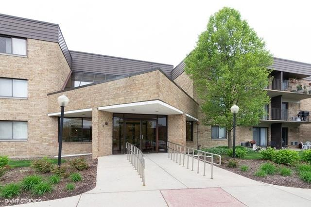 5550 Astor Lane #215, Rolling Meadows, IL 60008 (MLS #10391424) :: Berkshire Hathaway HomeServices Snyder Real Estate