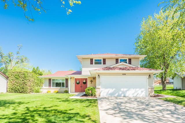 826 Duxbury Lane, Schaumburg, IL 60193 (MLS #10391775) :: Berkshire Hathaway HomeServices Snyder Real Estate