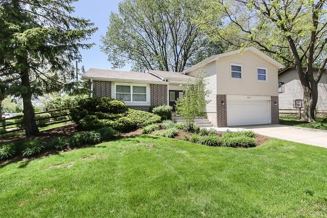 2002 W Parkview Circle, Hoffman Estates, IL 60169 (MLS #10391802) :: Berkshire Hathaway HomeServices Snyder Real Estate
