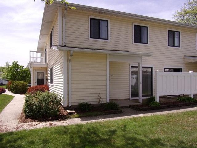323 Bayview #0, Schaumburg, IL 60194 (MLS #10391837) :: Berkshire Hathaway HomeServices Snyder Real Estate