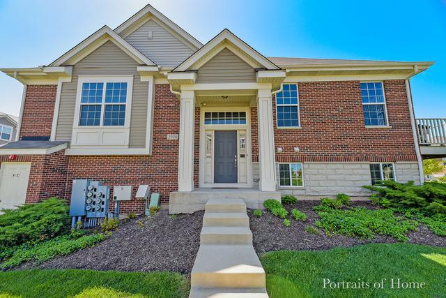 2556 Dunraven Avenue, Naperville, IL 60540 (MLS #10392057) :: Ani Real Estate
