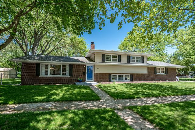 141 Tupelo Avenue, Naperville, IL 60540 (MLS #10392229) :: Ani Real Estate