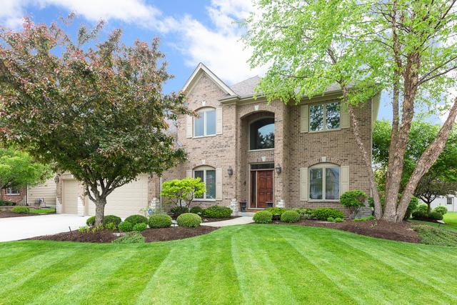11525 Century Circle, Plainfield, IL 60585 (MLS #10392446) :: Berkshire Hathaway HomeServices Snyder Real Estate