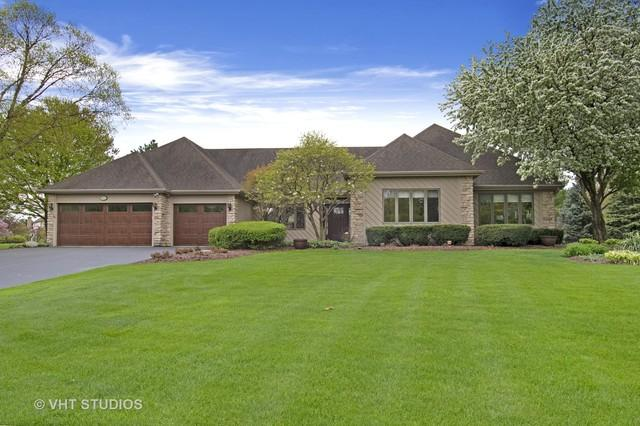 10522 Royal Porthcawl Drive, Naperville, IL 60564 (MLS #10392450) :: Littlefield Group