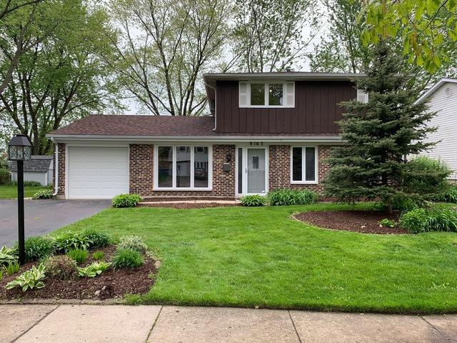 8163 N Carrolton Court, Hanover Park, IL 60133 (MLS #10392543) :: Berkshire Hathaway HomeServices Snyder Real Estate