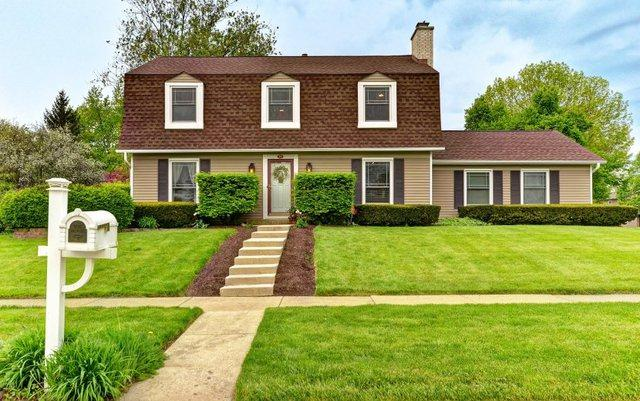 213 N Birchwood Drive, Naperville, IL 60540 (MLS #10392692) :: Ani Real Estate
