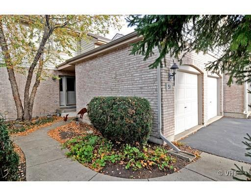 51 Iliad Drive, Tinley Park, IL 60477 (MLS #10393007) :: Berkshire Hathaway HomeServices Snyder Real Estate