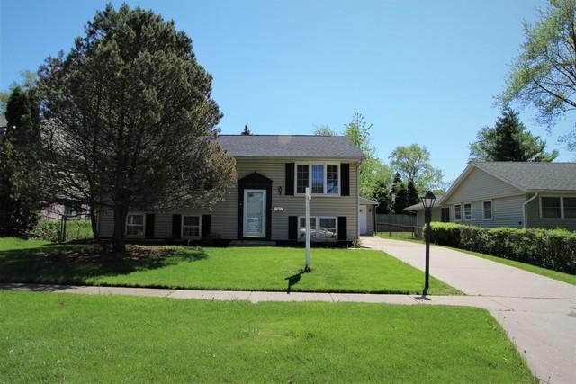 813 Oriole Drive, Streamwood, IL 60107 (MLS #10393029) :: Ani Real Estate