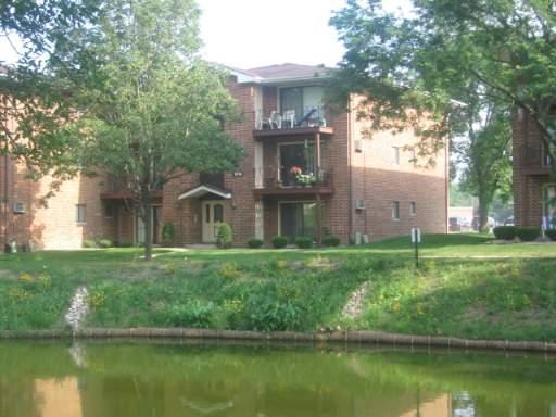 15740 S Lake Drive, Oak Forest, IL 60452 (MLS #10393047) :: Ani Real Estate