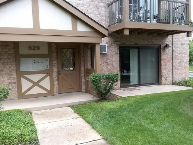 829 S Dwyer Avenue B, Arlington Heights, IL 60005 (MLS #10393212) :: Berkshire Hathaway HomeServices Snyder Real Estate
