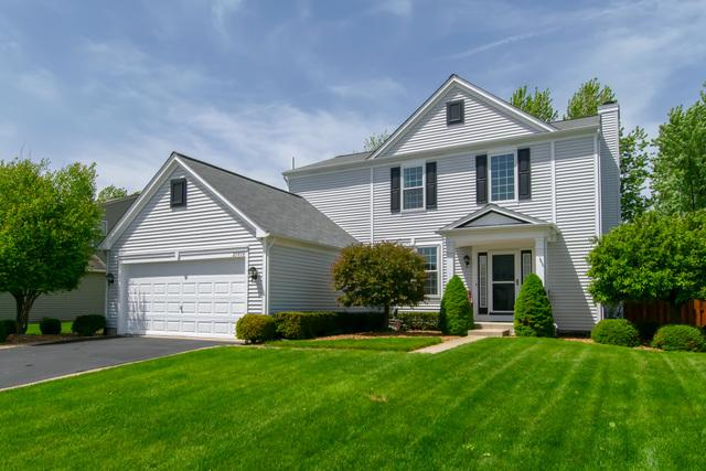 25050 Gates Lane, Plainfield, IL 60585 (MLS #10393303) :: Berkshire Hathaway HomeServices Snyder Real Estate