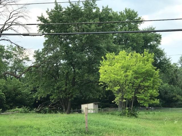 351 S Swift Road, Addison, IL 60101 (MLS #10393991) :: Baz Realty Network   Keller Williams Elite
