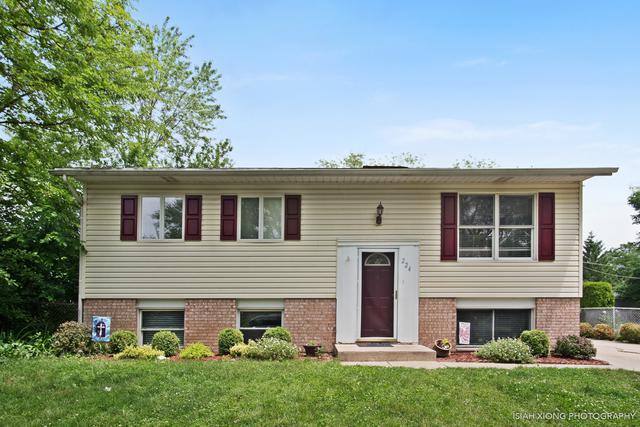 224 Monterey Drive, Bolingbrook, IL 60440 (MLS #10394580) :: Ryan Dallas Real Estate