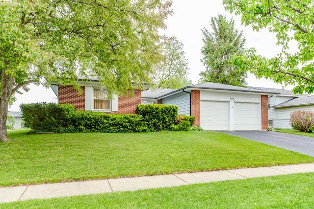 969 Wisconsin Lane, Elk Grove Village, IL 60007 (MLS #10395182) :: Baz Realty Network | Keller Williams Elite