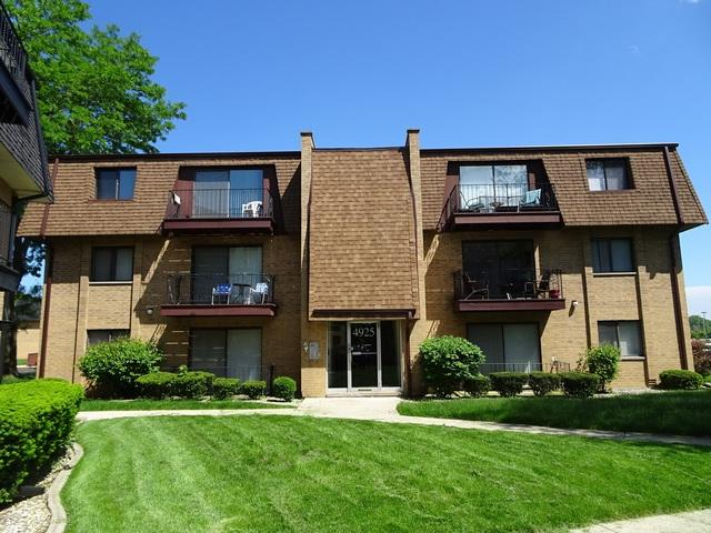 4925 W 109th Street #301, Oak Lawn, IL 60453 (MLS #10398667) :: Touchstone Group