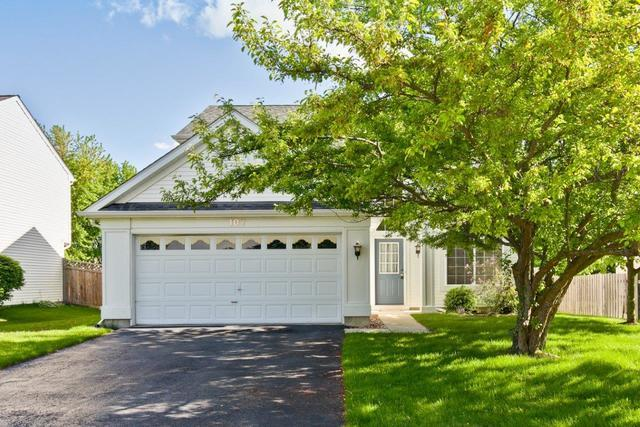 107 Suffolk Lane, Grayslake, IL 60030 (MLS #10399366) :: Property Consultants Realty