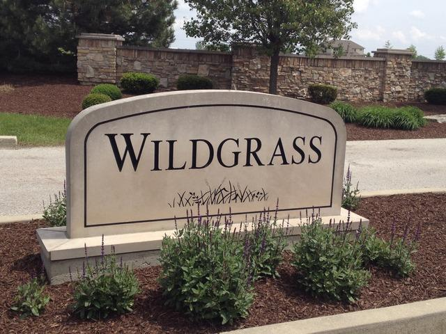 26615 Wildgrass Turn - Photo 1