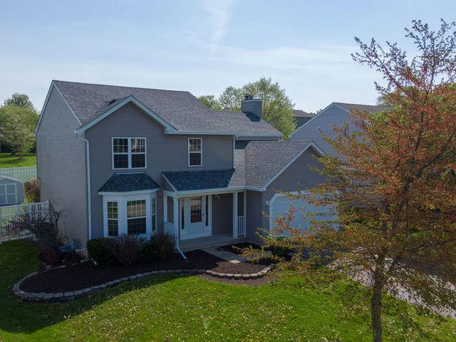 1052 Creekview Lane, Lake In The Hills, IL 60156 (MLS #10402330) :: Angela Walker Homes Real Estate Group