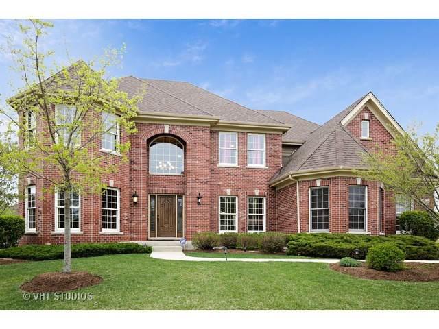 3583 Harmony Circle, Elgin, IL 60124 (MLS #10403288) :: Ani Real Estate