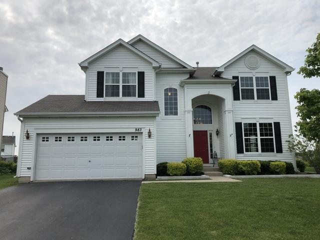 983 Great Falls Drive, Volo, IL 60073 (MLS #10403767) :: Angela Walker Homes Real Estate Group