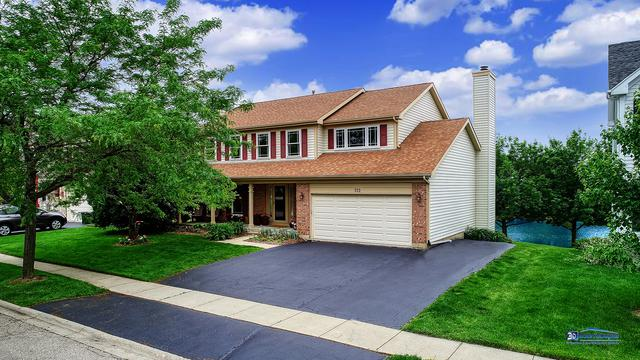 122 Braxton Way, Grayslake, IL 60030 (MLS #10403979) :: Baz Realty Network | Keller Williams Elite