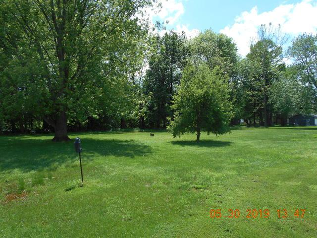 603 N Grant Street, Toledo, IL 62468 (MLS #10404484) :: John Lyons Real Estate