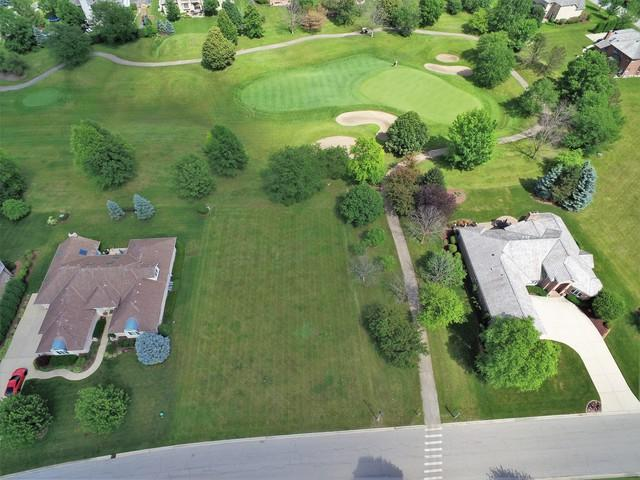 15 Ruffled Feathers Drive, Lemont, IL 60439 (MLS #10404960) :: Berkshire Hathaway HomeServices Snyder Real Estate