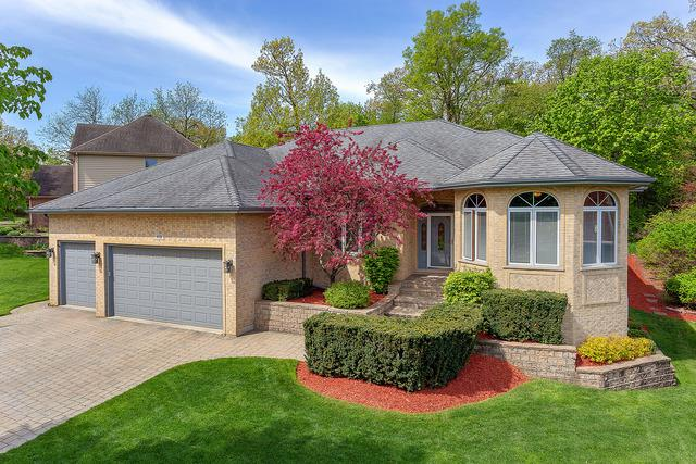 419 York Street, Bolingbrook, IL 60440 (MLS #10405184) :: The Wexler Group at Keller Williams Preferred Realty