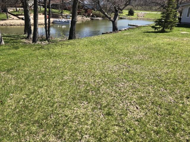 114 Cayuga Lane, Loda, IL 60948 (MLS #10405402) :: Ryan Dallas Real Estate
