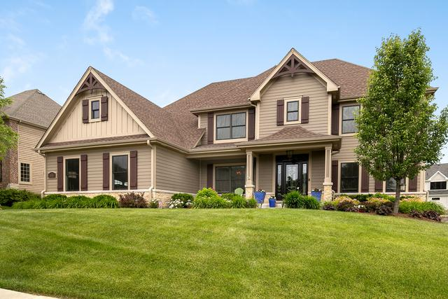 3686 Heathmoor Drive, Elgin, IL 60124 (MLS #10406531) :: BNRealty