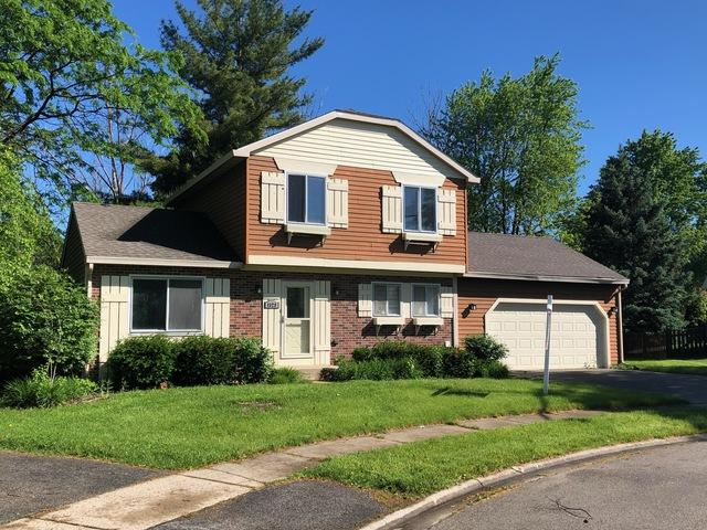 1329 Duquesne Avenue, Naperville, IL 60565 (MLS #10408030) :: Ryan Dallas Real Estate