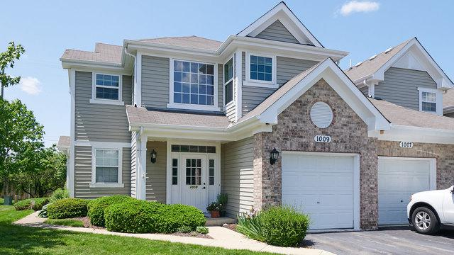 1009 Sheridan Circle #1009, Naperville, IL 60563 (MLS #10408087) :: Property Consultants Realty