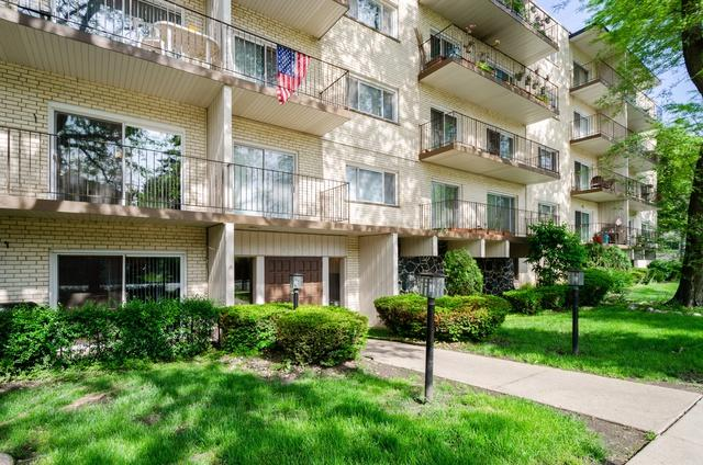 8630 Ferris Avenue #201, Morton Grove, IL 60053 (MLS #10408511) :: Baz Realty Network | Keller Williams Elite
