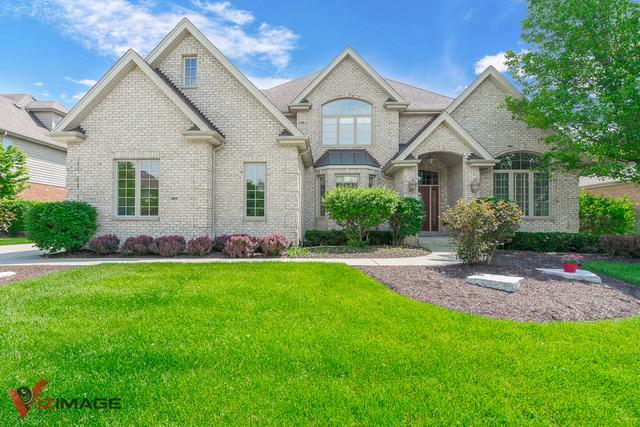 10905 White Deer Circle, Orland Park, IL 60467 (MLS #10408849) :: Berkshire Hathaway HomeServices Snyder Real Estate