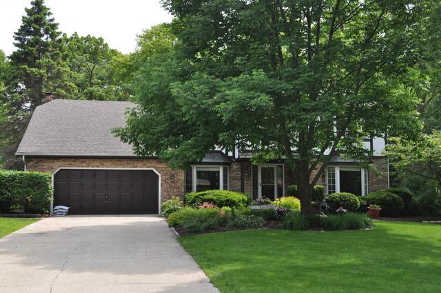 173 Green Leaf Drive, Oak Brook, IL 60523 (MLS #10409350) :: Angela Walker Homes Real Estate Group