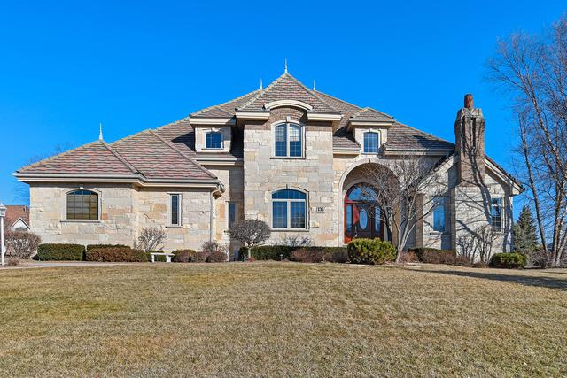 136 Singletree Road, Orland Park, IL 60467 (MLS #10409699) :: Berkshire Hathaway HomeServices Snyder Real Estate