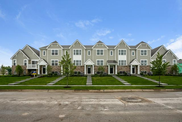 172 Goldenrod Drive, Elgin, IL 60124 (MLS #10411491) :: BNRealty