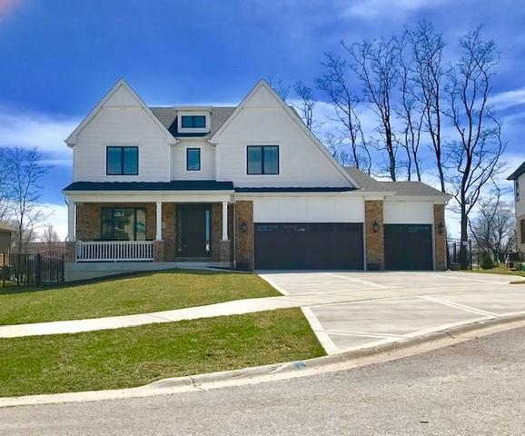 10051 El Cameno Re'al Drive, Orland Park, IL 60462 (MLS #10414227) :: Berkshire Hathaway HomeServices Snyder Real Estate