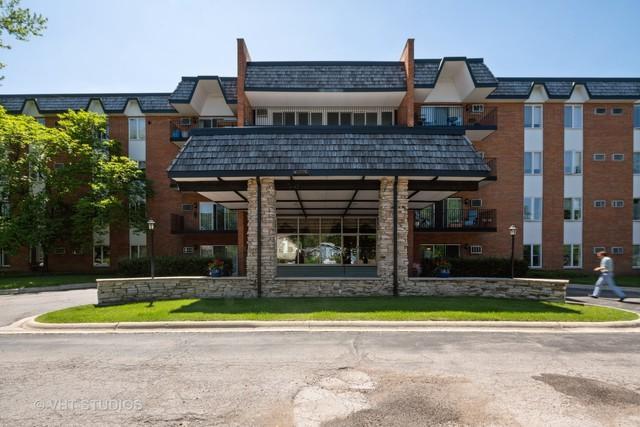4225 Saratoga Avenue 105B, Downers Grove, IL 60515 (MLS #10414785) :: The Dena Furlow Team - Keller Williams Realty