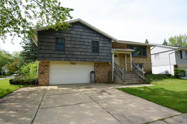 730 Stowell Avenue, Streamwood, IL 60107 (MLS #10415049) :: Property Consultants Realty