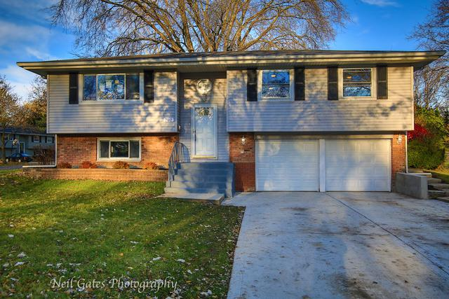 702 Dartmouth Lane, Schaumburg, IL 60193 (MLS #10415460) :: Angela Walker Homes Real Estate Group