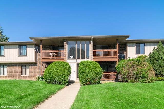 703 Garden Circle #8, Streamwood, IL 60107 (MLS #10416478) :: Property Consultants Realty