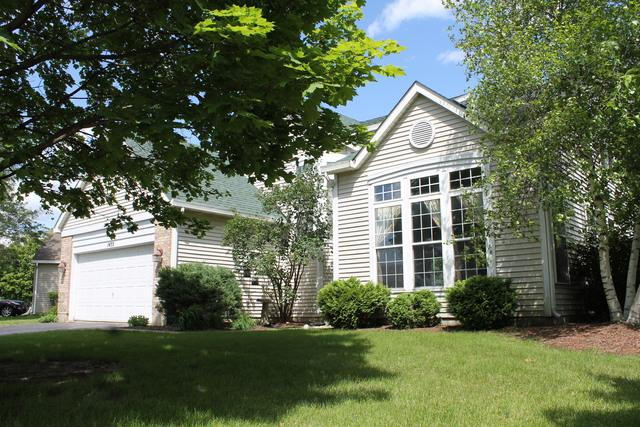 1455 Misthaven Lane, Elgin, IL 60123 (MLS #10416498) :: The Perotti Group | Compass Real Estate