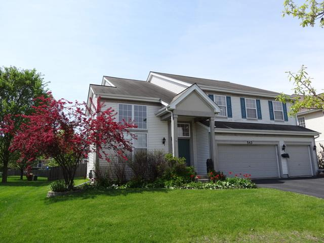 543 W Tremont Lane, Round Lake, IL 60073 (MLS #10416614) :: Property Consultants Realty