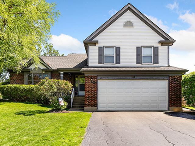 110 Newfield Drive, Buffalo Grove, IL 60089 (MLS #10417054) :: The Perotti Group | Compass Real Estate