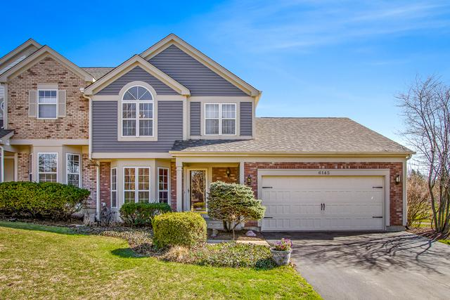 6145 Pebble Creek Court, Gurnee, IL 60031 (MLS #10417078) :: The Perotti Group | Compass Real Estate