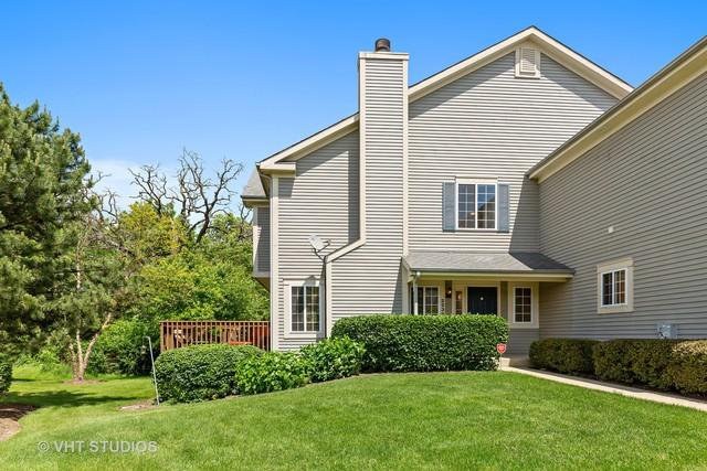253 Windsor Court B, South Elgin, IL 60177 (MLS #10417225) :: The Perotti Group | Compass Real Estate