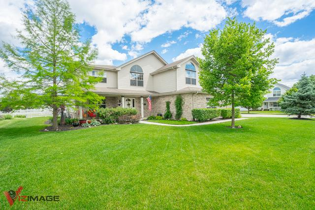 16563 S Lakeview Drive, Lockport, IL 60441 (MLS #10417434) :: The Wexler Group at Keller Williams Preferred Realty