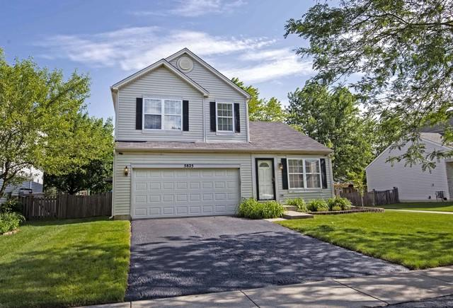 5825 Emerald Pointe Drive, Plainfield, IL 60586 (MLS #10417871) :: The Dena Furlow Team - Keller Williams Realty